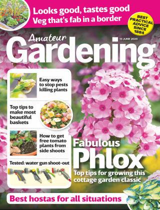 Amateur Gardening 13th June 2020