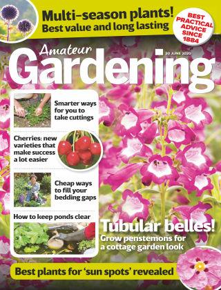 Amateur Gardening 20th June 2020