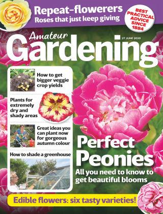 Amateur Gardening 27th June 2020