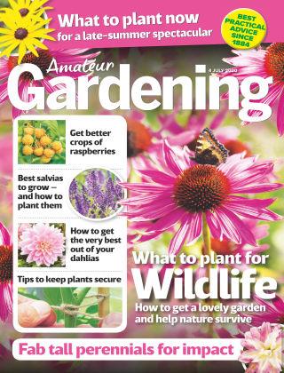 Amateur Gardening 4th July 2020