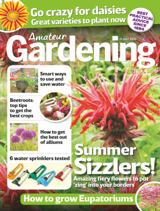Amateur Gardening 11th July 2020