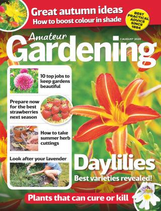 Amateur Gardening 1st August 2020