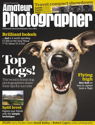 Amateur Photographer 20th August 2016