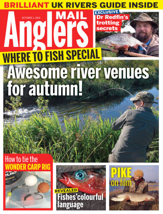 Angler's Mail Oct 1 2019