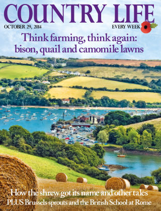 Country Life 29th October 2014