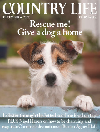 Country Life Magazine 6th December 2017