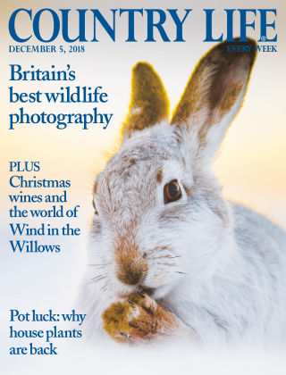 Country Life 5th December 2018