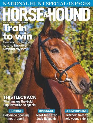 Horse & Hound 3rd November 2016