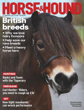 Horse & Hound 16th February 2017