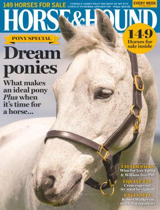 Horse & Hound 6th June 2019