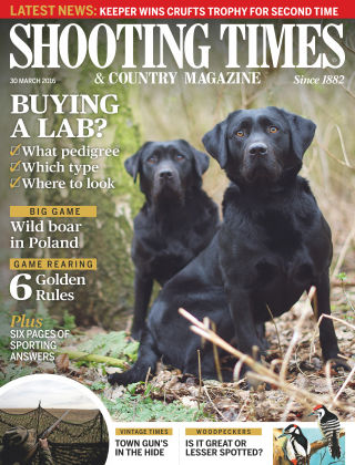 Shooting Times & Country Magazine 6th April 2016