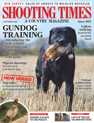 Shooting Times & Country Magazine 7th September 2016