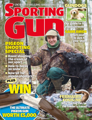 Sporting Gun March 2014