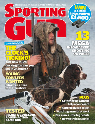 Sporting Gun October 2013