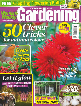 Woman's Weekly Living Series October 2019