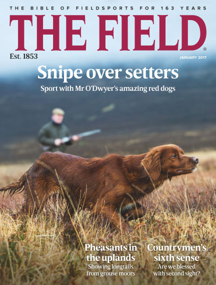 The Field December 15, 2016 00:00