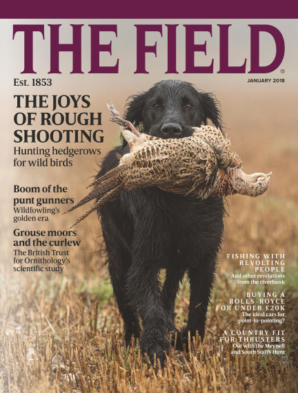 The Field December 14, 2017 00:00