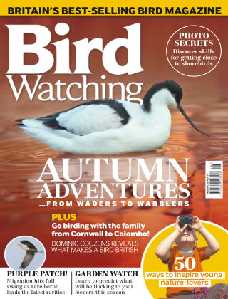 Bird Watching Autumn 2014