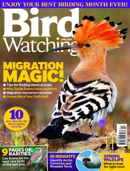 Bird Watching March 20, 2014 00:00