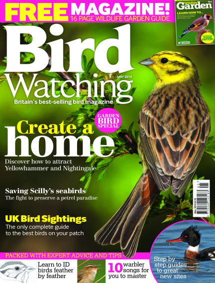 Bird Watching April 17, 2014 00:00