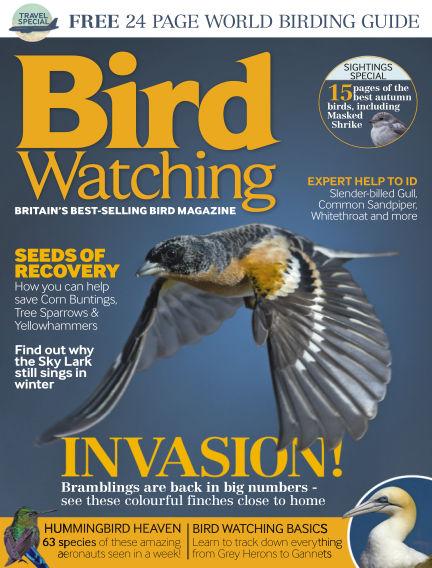 Bird Watching October 30, 2014 00:00