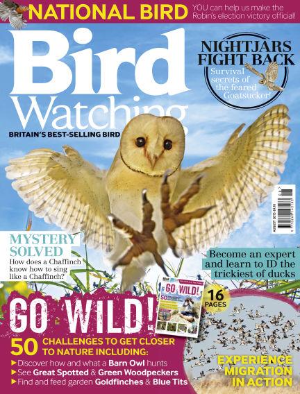 Bird Watching July 08, 2015 00:00