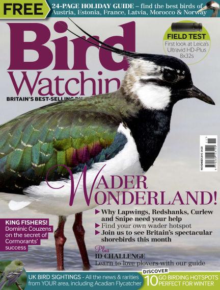 Bird Watching October 28, 2015 00:00