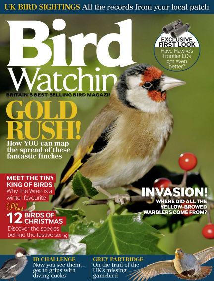 Bird Watching November 25, 2015 00:00
