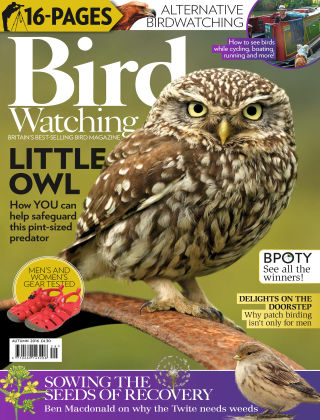 Bird Watching Autumn Special 2016