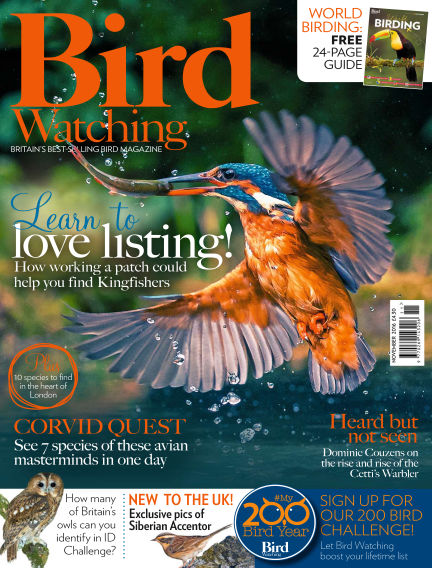 Bird Watching October 27, 2016 00:00