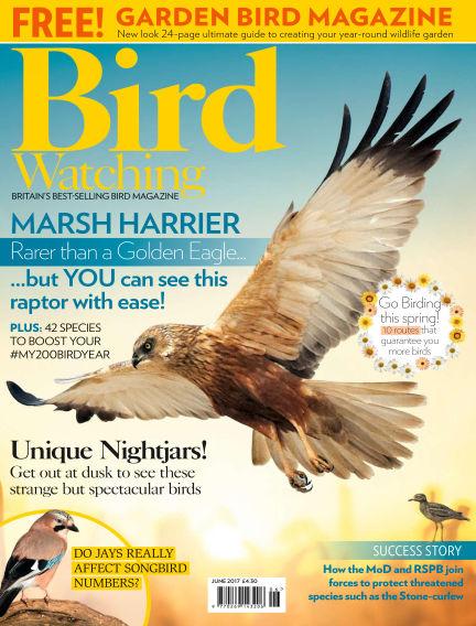 Bird Watching May 11, 2017 00:00