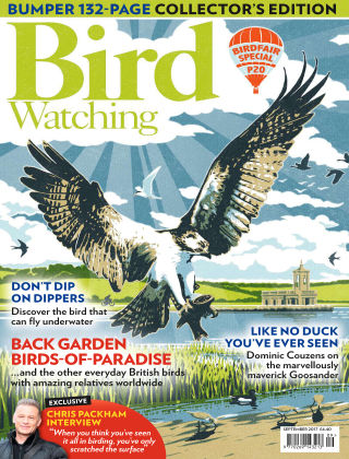 Bird Watching Sep 2017