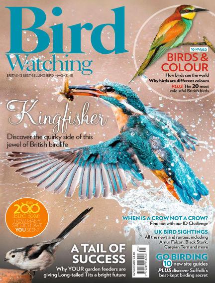 Bird Watching August 31, 2017 00:00