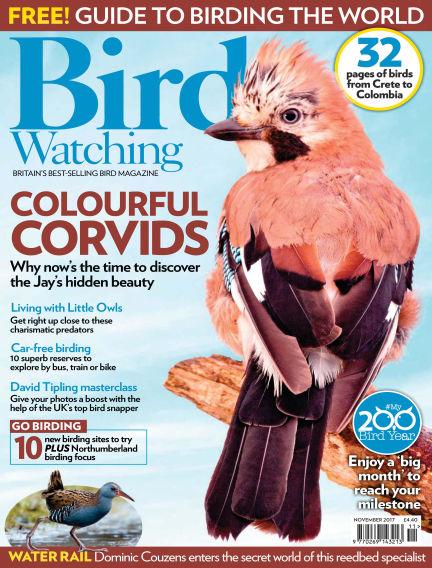 Bird Watching October 26, 2017 00:00
