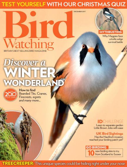 Bird Watching November 23, 2017 00:00