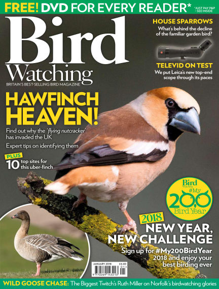 Bird Watching December 21, 2017 00:00