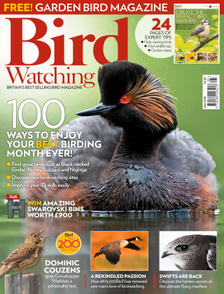 Bird Watching May 2018