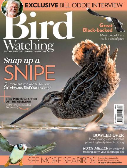 Bird Watching August 30, 2018 00:00
