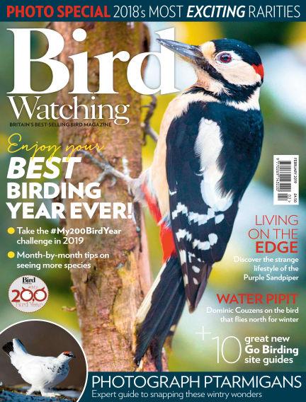 Bird Watching January 17, 2019 00:00