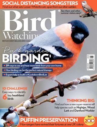Bird Watching Jun 2020
