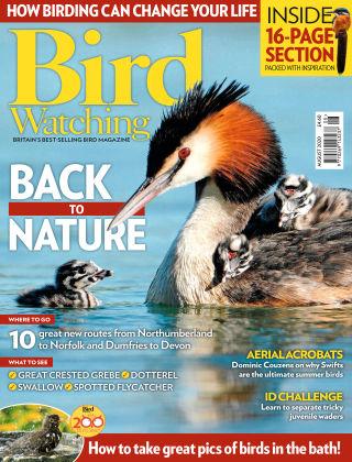 Bird Watching August 2020