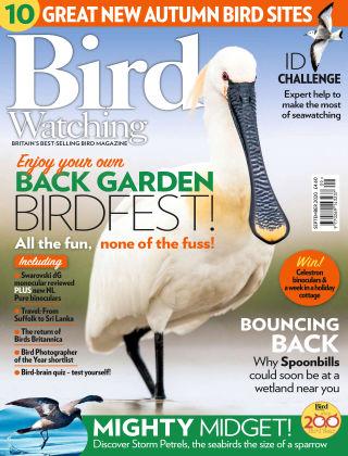 Bird Watching September 2020