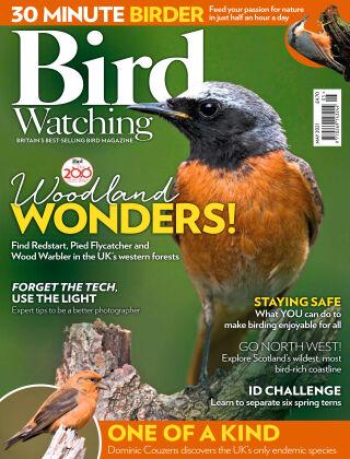 Bird Watching May 2021