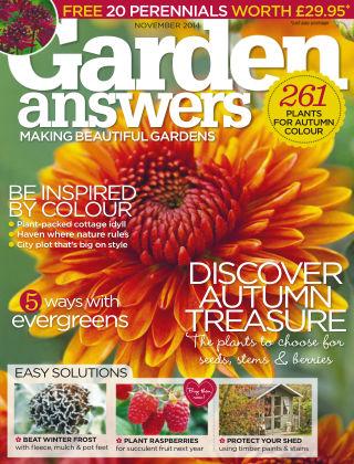 Garden Answers November 2014