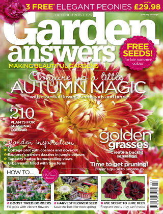 Garden Answers October 2015