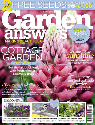 Garden Answers June 2016