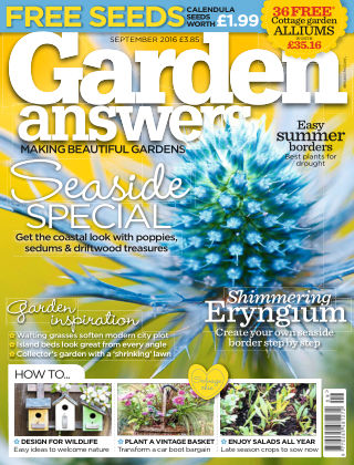 Garden Answers September 2016