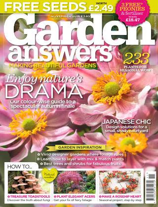 Garden Answers November 2016
