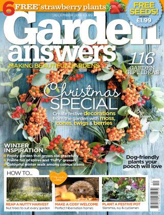 Garden Answers December 2016