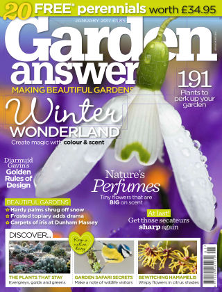 Garden Answers January 2017